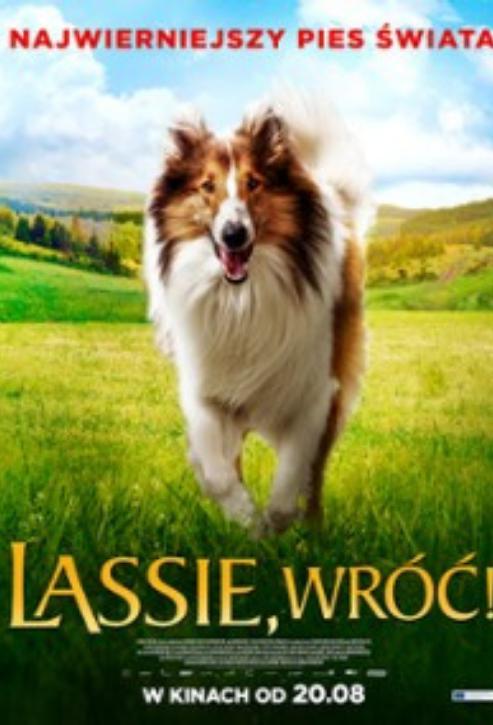 Lassie! Wróć